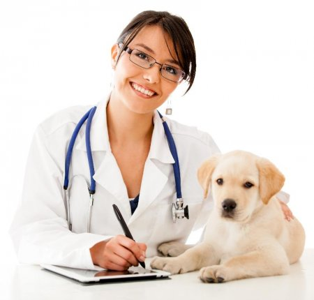 Vaccines for pets