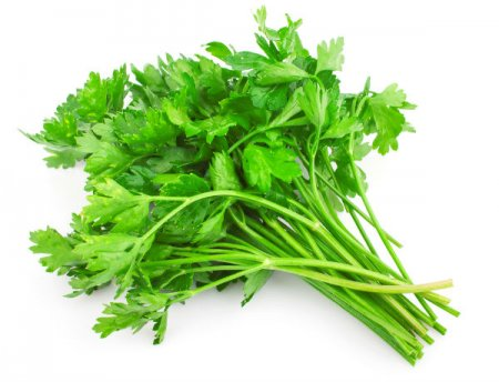 The best herbs for purification  kidney